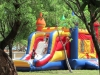 Picnic-Bounce-House