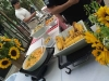 Bacardi_Catering11